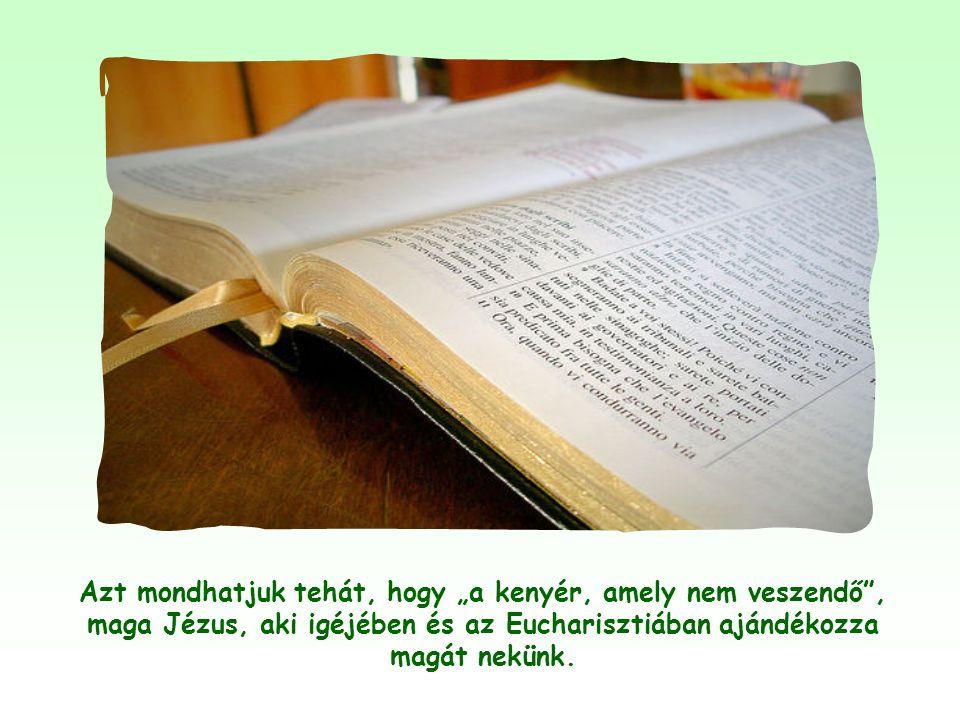 """Ha az ember tovább olvassa Jézus szavait, akkor látja, hogy ez a """"nem veszendő eledel"""" azonos Jézus eucharisztikus testével."""