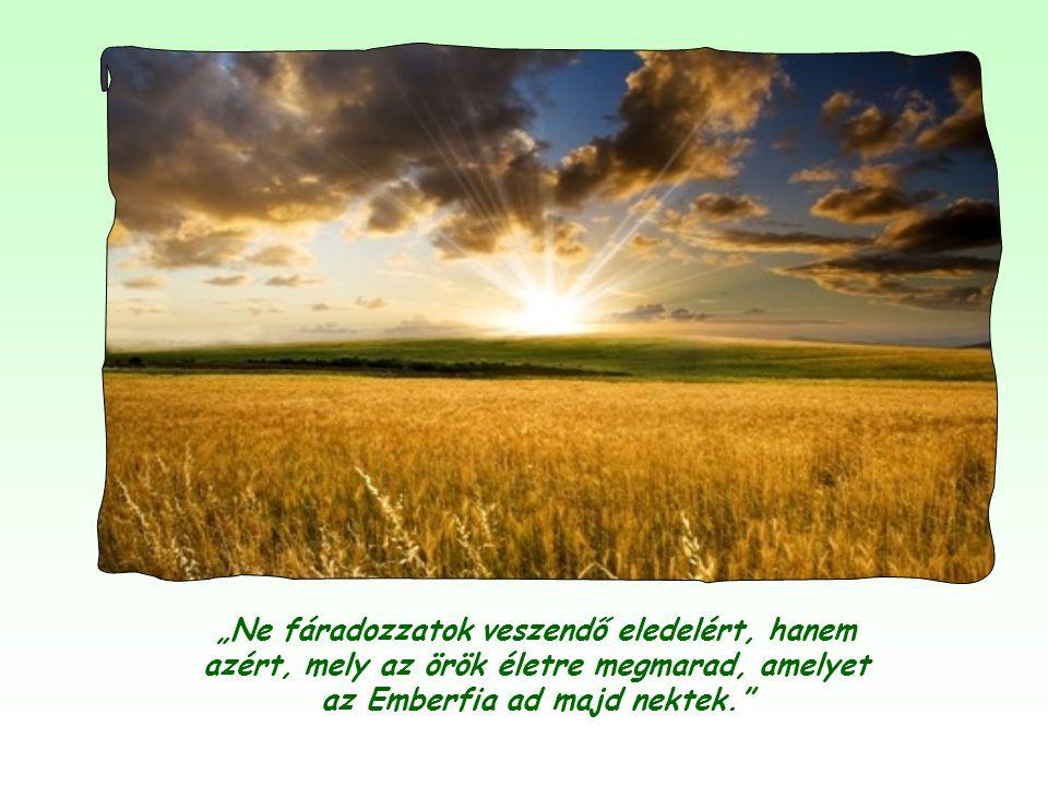 """Azt mondhatjuk tehát, hogy """"a kenyér, amely nem veszendő"""", maga Jézus, aki igéjében és az Eucharisztiában ajándékozza magát nekünk."""