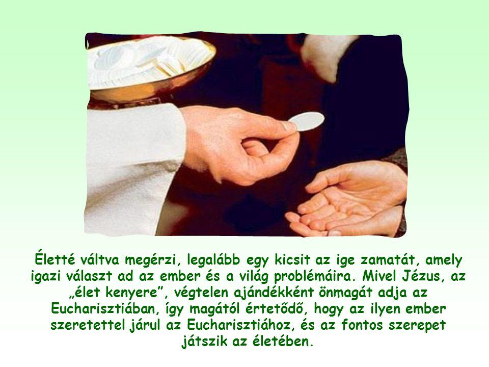 Gondolom, hogy mindenki, aki elkötelezetten próbálja élni Jézus igéit, különösen a felebarát iránti szeretet parancsát, mint Isten összes igéjének és
