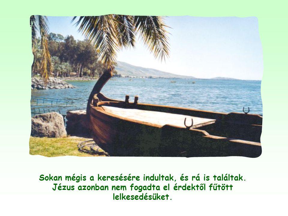 Jézus, miután a Tibériás tavánál jóllakatta a sokaságot a kenyérszaporítással, titokban átment a tó túlsó partjára, Kafarnaum környékére, hogy visszav