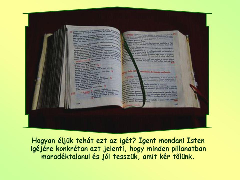 """""""Íme, az Úr szolgálója vagyok, legyen nekem a te igéd szerint."""" (Lk 1,38)"""
