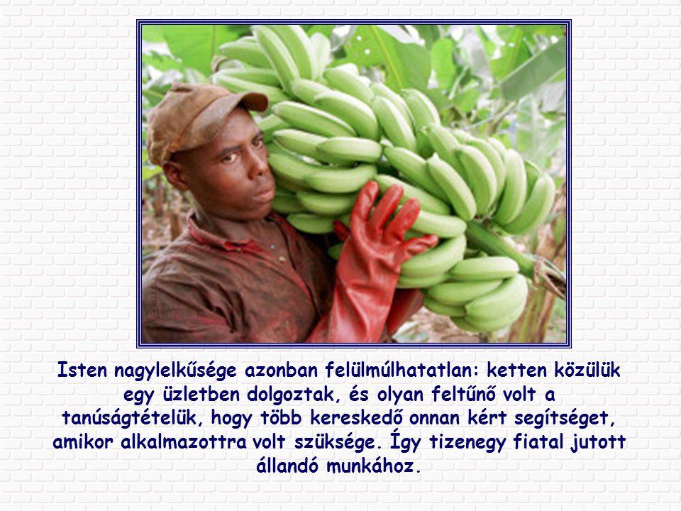 Kongóban néhány fiatal művészi képeslapokat kezdett készíteni banánhéjból, és pár hónapra rá Németországban adták el.