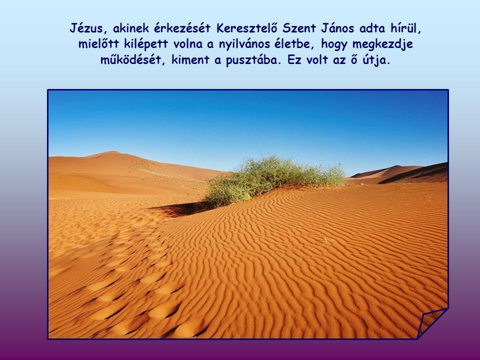 Keresztelő János azt hirdeti, hogy elő kell készítenünk az Úr útját. De milyen útról van szó