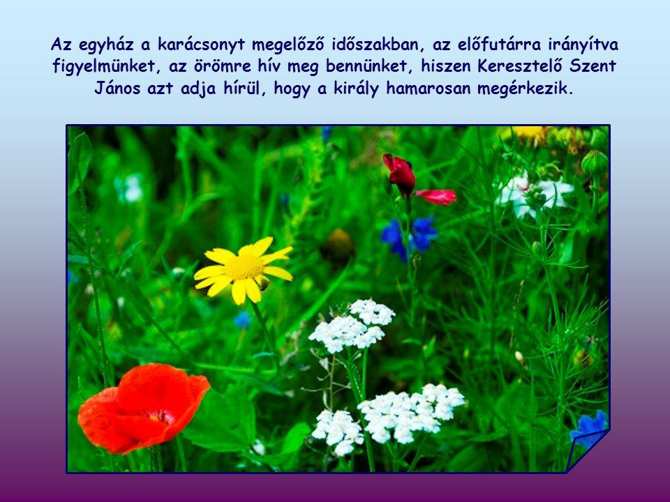 Az első keresztények szerint ez az idézet Keresztelő Szent Jánosra vonatkozik, aki Jézus eljövetelét készítette elő.