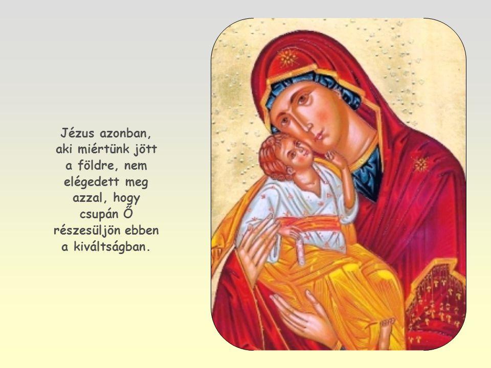 """Elég, ha Jézusra tekintünk, Isten fiára, kapcsolatára az Atyával: a """"Miatyánk feltárja, hogyan imádkozott az Atyához."""