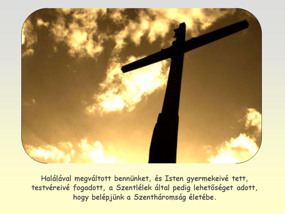 Jézus azonban, aki miértünk jött a földre, nem elégedett meg azzal, hogy csupán Ő részesüljön ebben a kiváltságban.