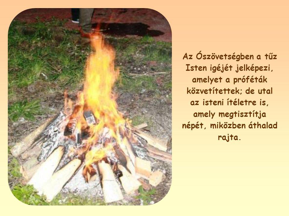 """""""Azért jöttem, hogy tüzet gyújtsak a földön. Mi mást akarnék, minthogy lángra lobbanjon!"""" (Lk 12,49)"""
