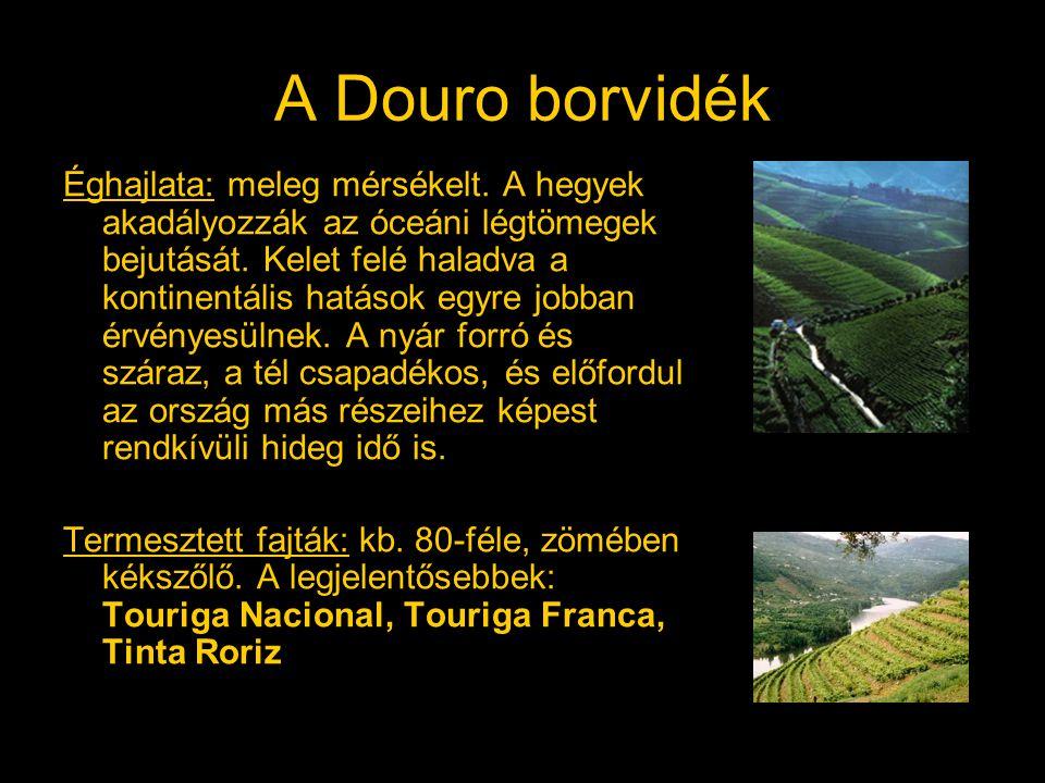 A Douro borvidék Éghajlata: meleg mérsékelt. A hegyek akadályozzák az óceáni légtömegek bejutását. Kelet felé haladva a kontinentális hatások egyre jo