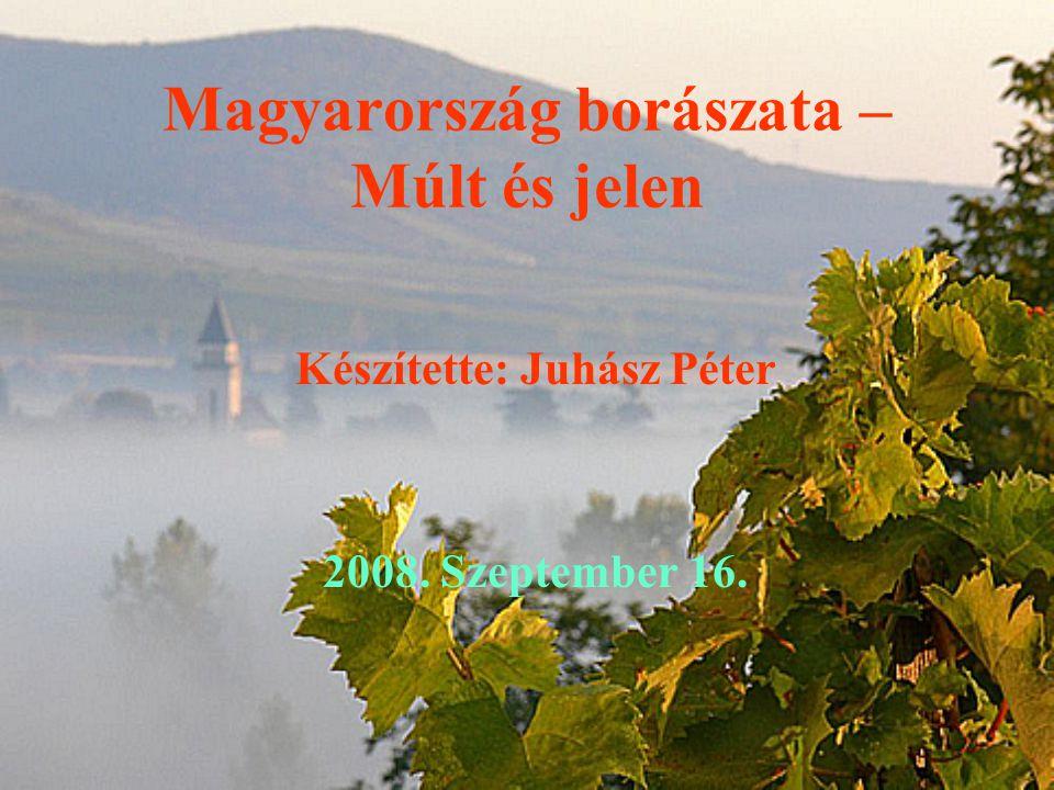 Magyarország borászata – Múlt és jelen Készítette: Juhász Péter 2008. Szeptember 16.