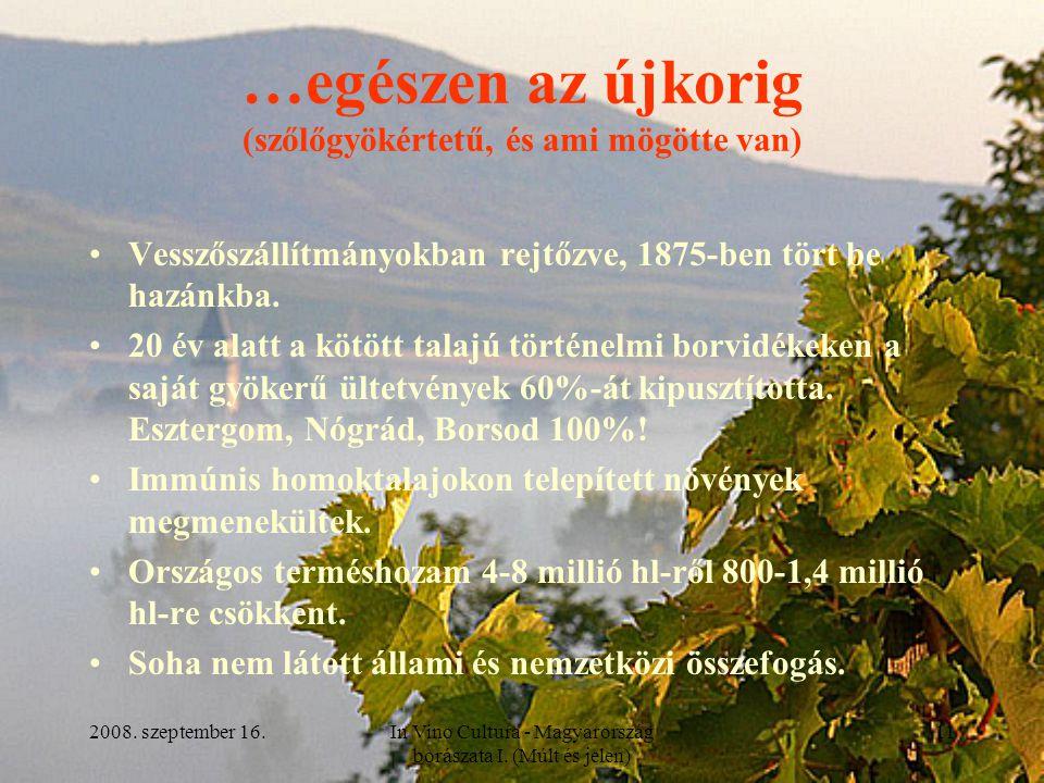 2008. szeptember 16.In Vino Cultura - Magyarország borászata I. (Múlt és jelen) 11 …egészen az újkorig (szőlőgyökértetű, és ami mögötte van) Vesszőszá