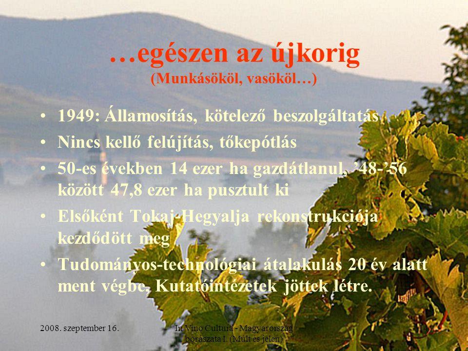 2008. szeptember 16.In Vino Cultura - Magyarország borászata I. (Múlt és jelen) 14 …egészen az újkorig (Munkásököl, vasököl…) 1949: Államosítás, kötel