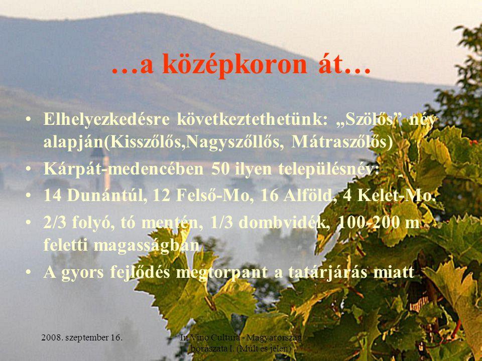 """2008. szeptember 16.In Vino Cultura - Magyarország borászata I. (Múlt és jelen) 5 …a középkoron át… Elhelyezkedésre következtethetünk: """"Szölős"""" név al"""