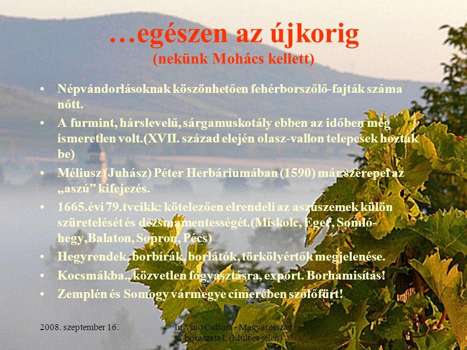 2008. szeptember 16.In Vino Cultura - Magyarország borászata I. (Múlt és jelen) 9 …egészen az újkorig (nekünk Mohács kellett) Népvándorlásoknak köszön