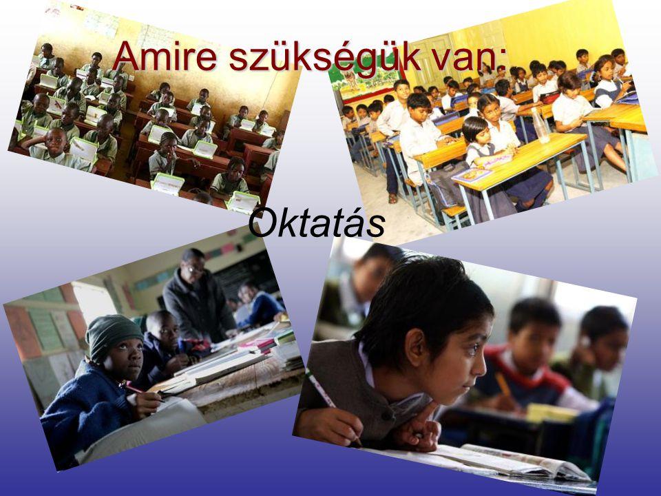 Amire szükségük van: Oktatás