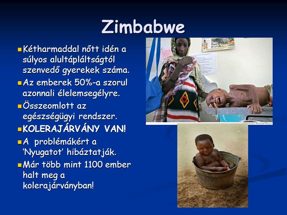 Zimbabwe Kétharmaddal nőtt idén a súlyos alultápláltságtól szenvedő gyerekek száma. Kétharmaddal nőtt idén a súlyos alultápláltságtól szenvedő gyereke