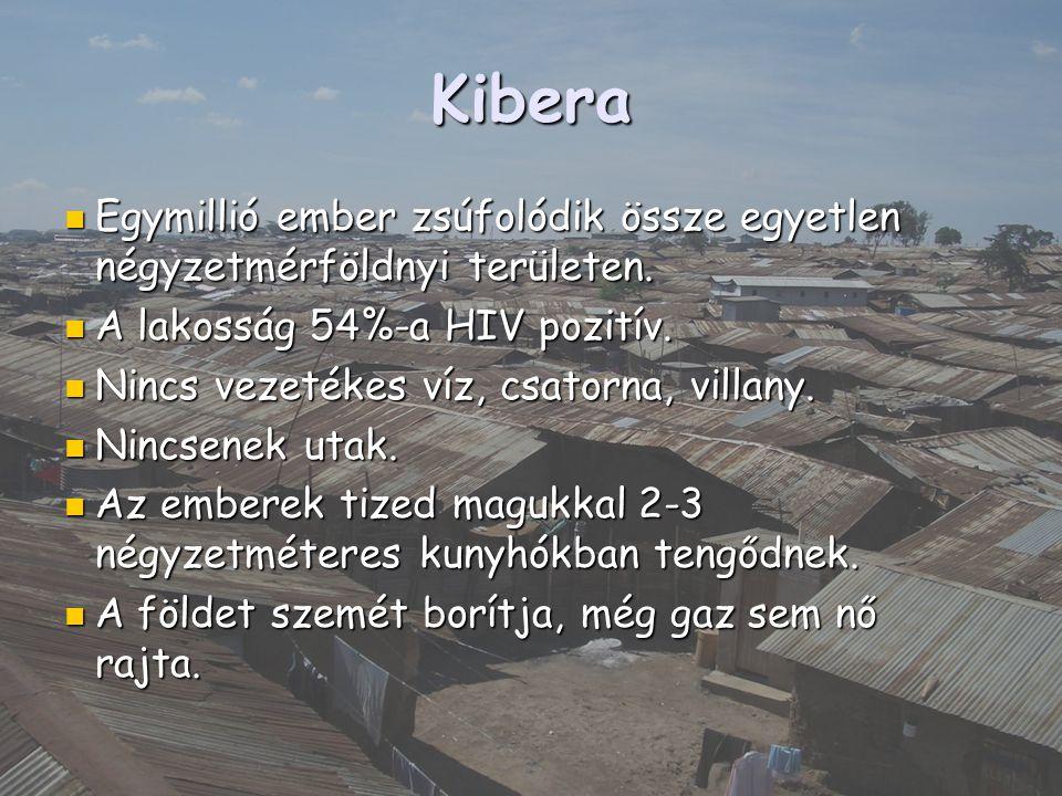 Kibera Egymillió ember zsúfolódik össze egyetlen négyzetmérföldnyi területen. Egymillió ember zsúfolódik össze egyetlen négyzetmérföldnyi területen. A