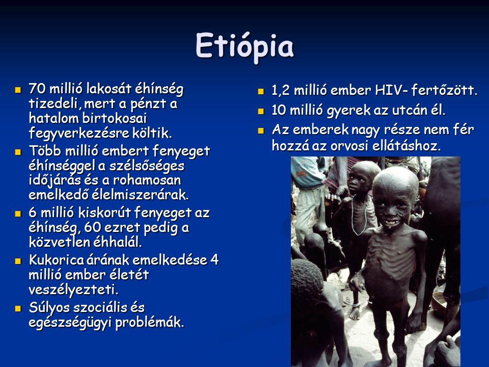 Etiópia 70 millió lakosát éhínség tizedeli, mert a pénzt a hatalom birtokosai fegyverkezésre költik. 70 millió lakosát éhínség tizedeli, mert a pénzt