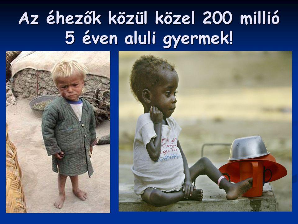 Az éhezők közül közel 200 millió 5 éven aluli gyermek!
