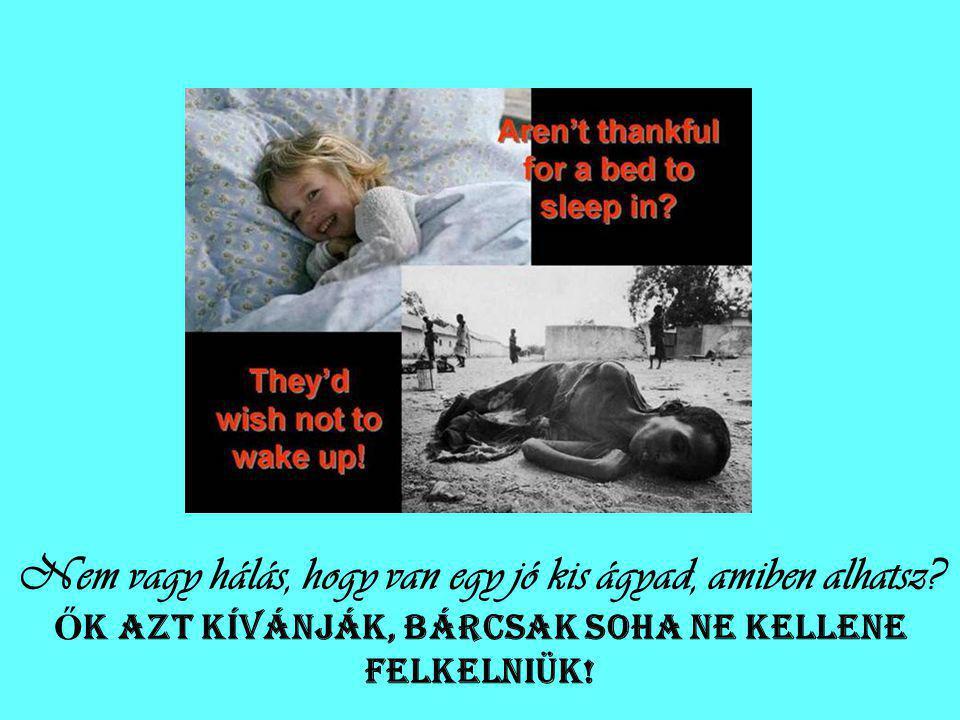 Nem vagy hálás, hogy van egy jó kis ágyad, amiben alhatsz.