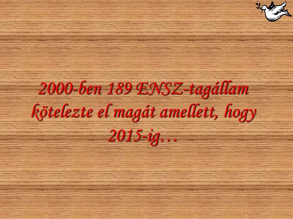 2000-ben 189 ENSZ-tagállam kötelezte el magát amellett, hogy 2015-ig…