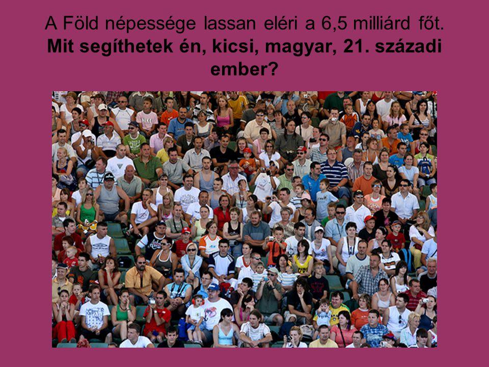 A Föld népessége lassan eléri a 6,5 milliárd főt. Mit segíthetek én, kicsi, magyar, 21. századi ember?