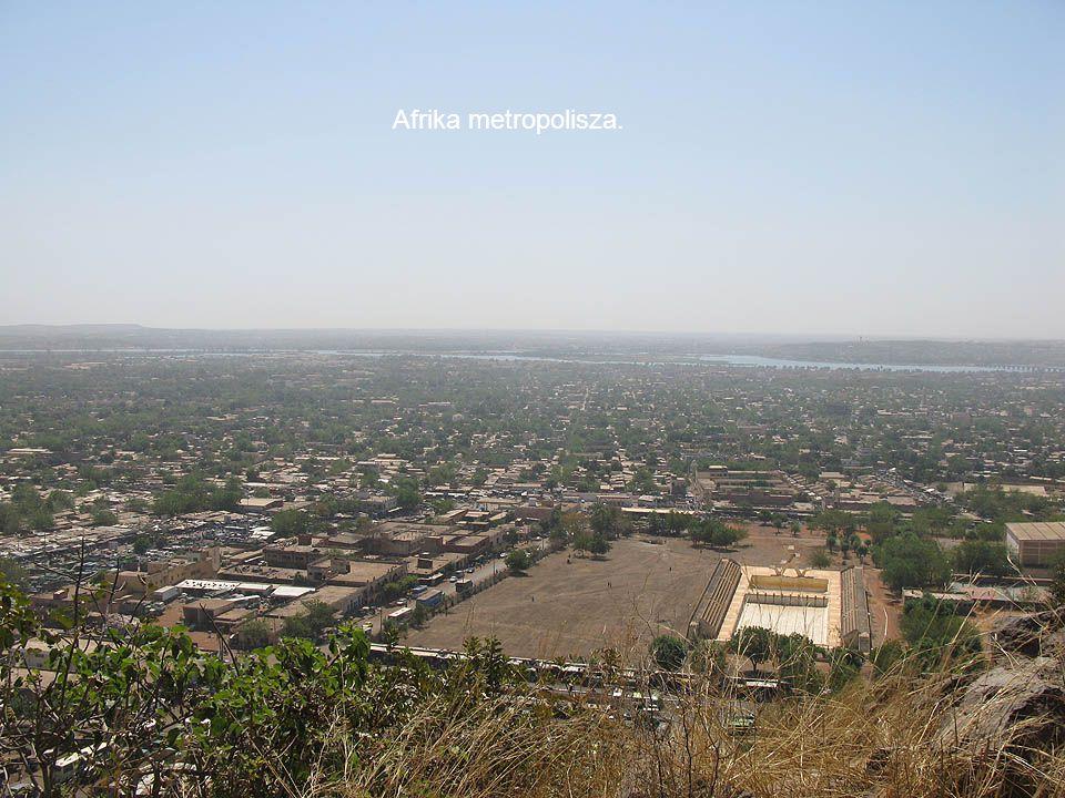 Afrika metropolisza.