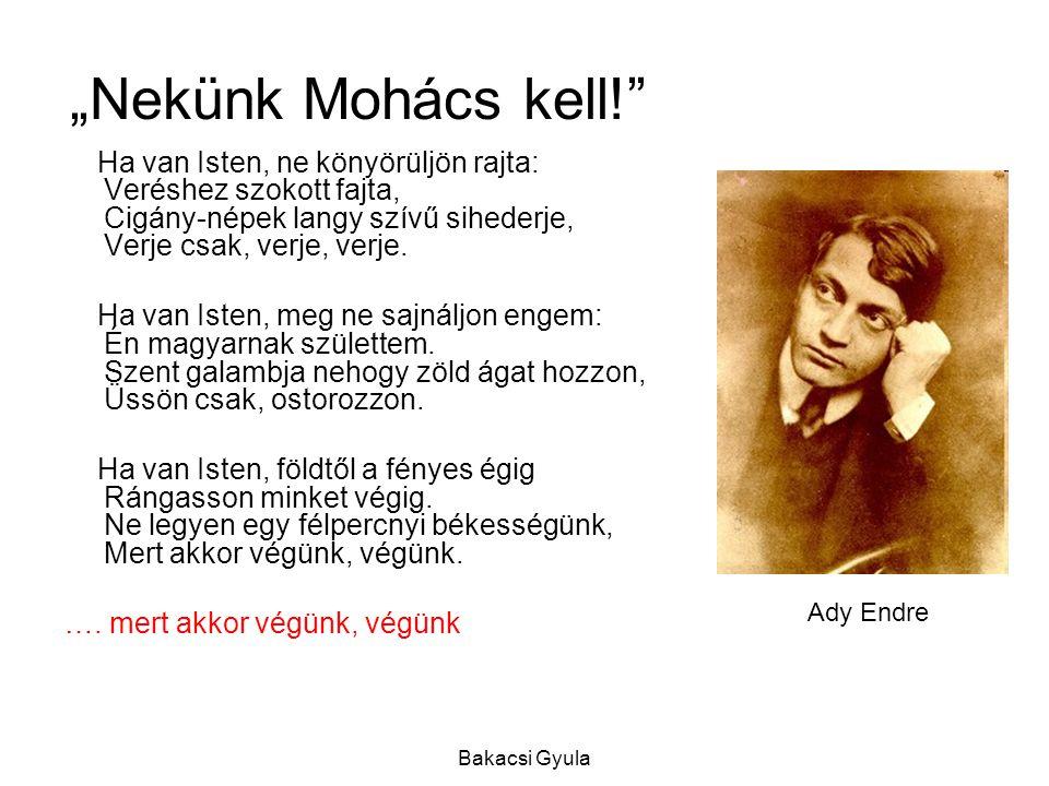 """Bakacsi Gyula """"Nekünk Mohács kell! Ha van Isten, ne könyörüljön rajta: Veréshez szokott fajta, Cigány-népek langy szívű sihederje, Verje csak, verje, verje."""