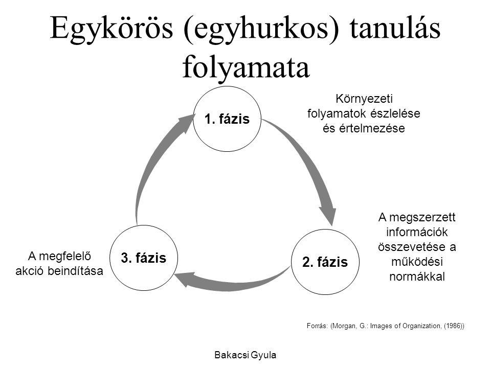 Bakacsi Gyula Egykörös (egyhurkos) tanulás folyamata Forrás: (Morgan, G.: Images of Organization, (1986)) 3.