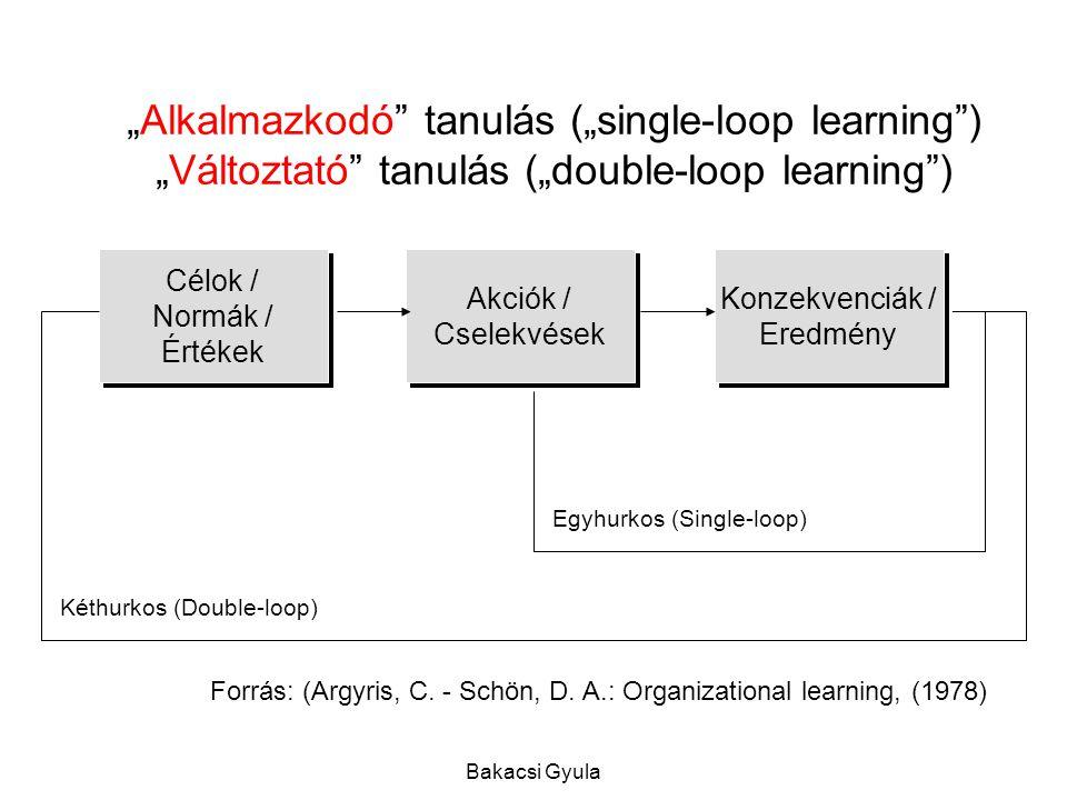 Bakacsi Gyula Célok / Normák / Értékek Akciók / Cselekvések Konzekvenciák / Eredmény Egyhurkos (Single-loop) Kéthurkos (Double-loop) Forrás: (Argyris, C.