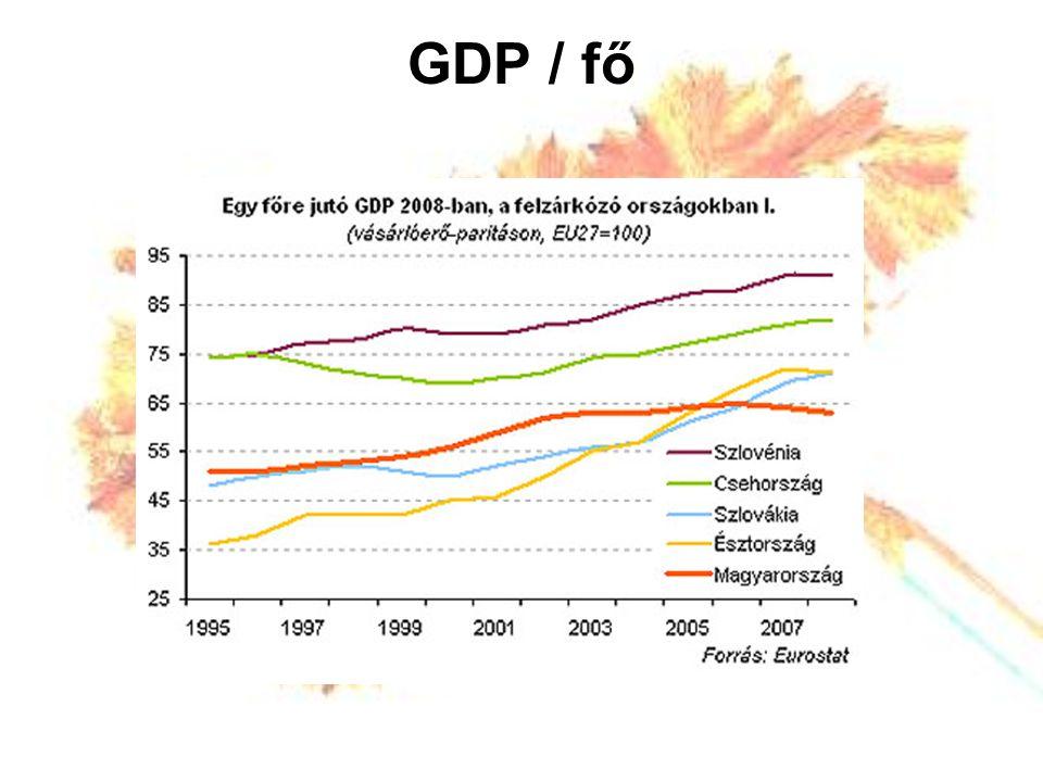 GDP / fő