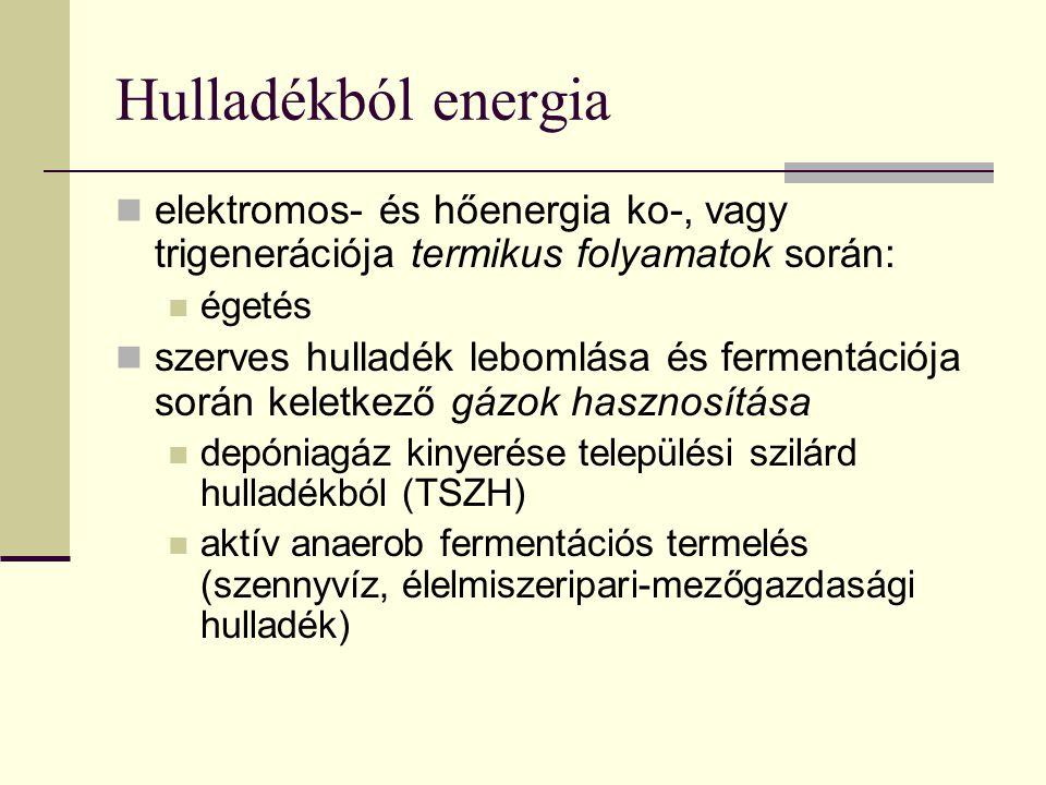 Hulladékból energia elektromos- és hőenergia ko-, vagy trigenerációja termikus folyamatok során: égetés szerves hulladék lebomlása és fermentációja so