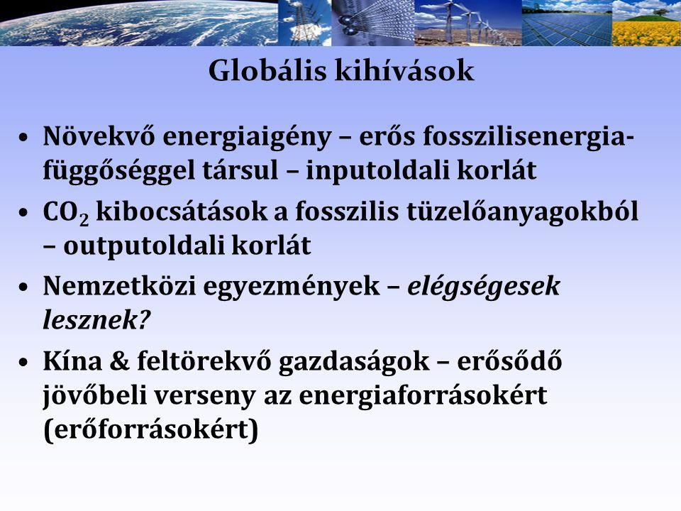 Globális kihívások Növekvő energiaigény – erős fosszilisenergia- függőséggel társul – inputoldali korlát CO 2 kibocsátások a fosszilis tüzelőanyagokból – outputoldali korlát Nemzetközi egyezmények – elégségesek lesznek.