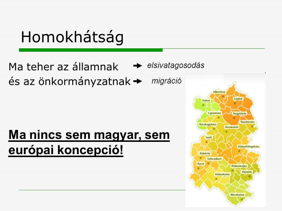 Homokhátság Ma teher az államnak és az önkormányzatnak elsivatagosodás migráció Ma nincs sem magyar, sem európai koncepció!