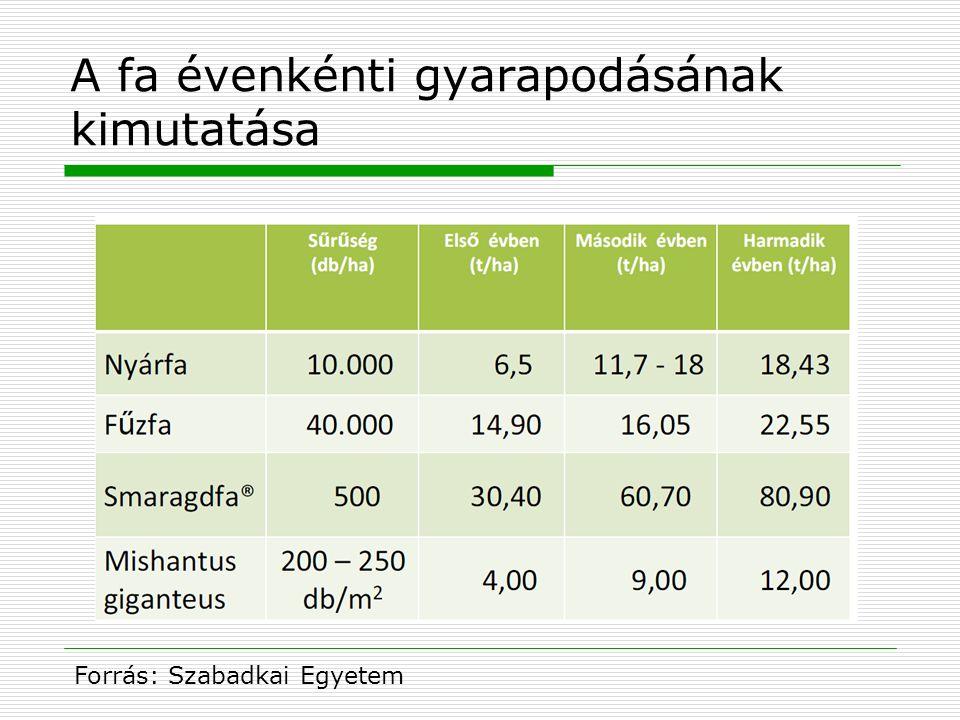 A fa évenkénti gyarapodásának kimutatása Forrás: Szabadkai Egyetem