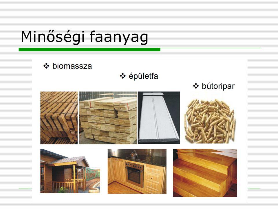 Minőségi faanyag