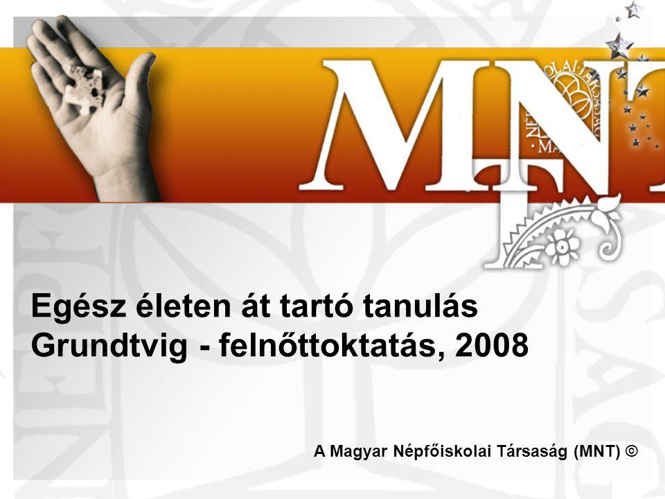 Példák: A nem-formális tanulás értékelésének közös elvei: http://www.eaea.org/news.php?k=3224&aid=3224 Projekt Transfine: a tanulás értékelése: www.transfine.netwww.transfine.net A nem-.formális tanulás értékelésének európai tárháza: http://www.ecotec.com/europeaninventory/http://www.ecotec.com/europeaninventory/ Európai Szakképzés fejlesztési Intézet: http://www.trainingvillage.gr/etv/Projects_networks/nonformal/ Youthpass: a nem-formálistanuláselismerése http://www.salto-youth.net/youthpass Egész életen át tartó tanulás Grundtvig - felnőttoktatás, 2008
