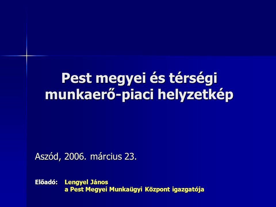 Pest megyei és térségi munkaerő-piaci helyzetkép Aszód, 2006.