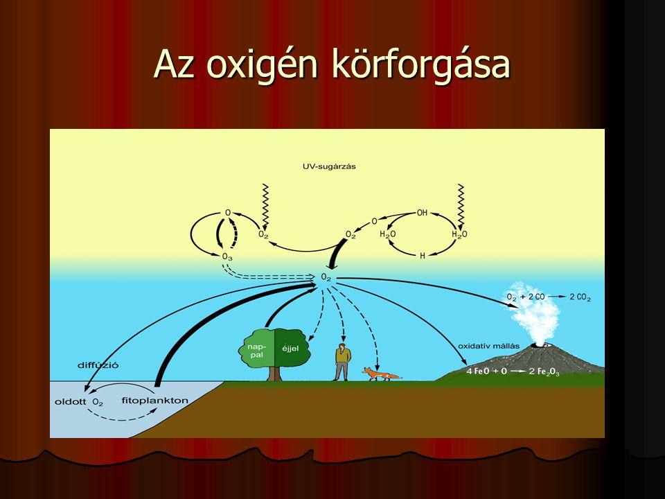 Az oxigén körforgása