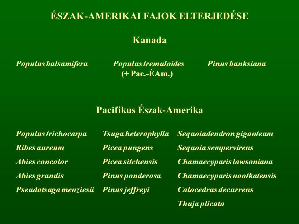 ÉSZAK-AMERIKAI FAJOK ELTERJEDÉSE Kanada Populus balsamiferaPopulus tremuloides (+ Pac.-ÉAm.) Pinus banksiana Pacifikus Észak-Amerika Populus trichocar