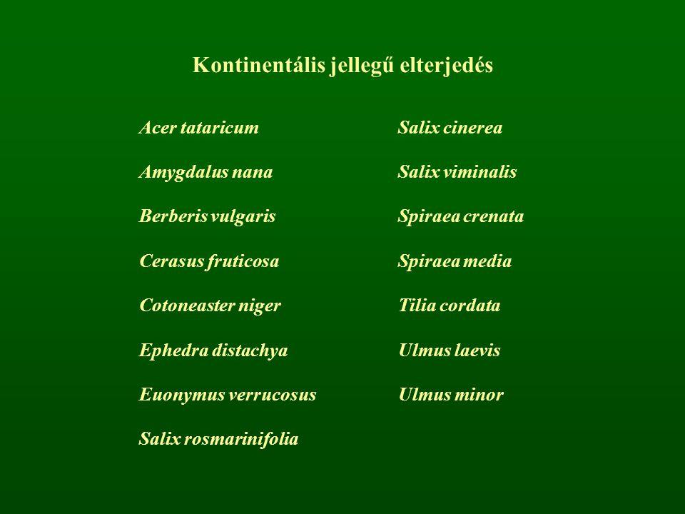 Acer tataricumSalix cinerea Amygdalus nanaSalix viminalis Berberis vulgarisSpiraea crenata Cerasus fruticosaSpiraea media Cotoneaster nigerTilia corda