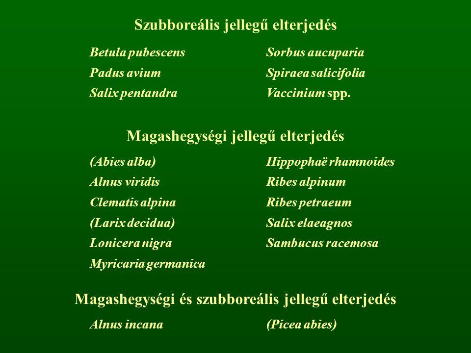 Szubboreális jellegű elterjedés Betula pubescensSorbus aucuparia Padus aviumSpiraea salicifolia Salix pentandraVaccinium spp. Magashegységi jellegű el