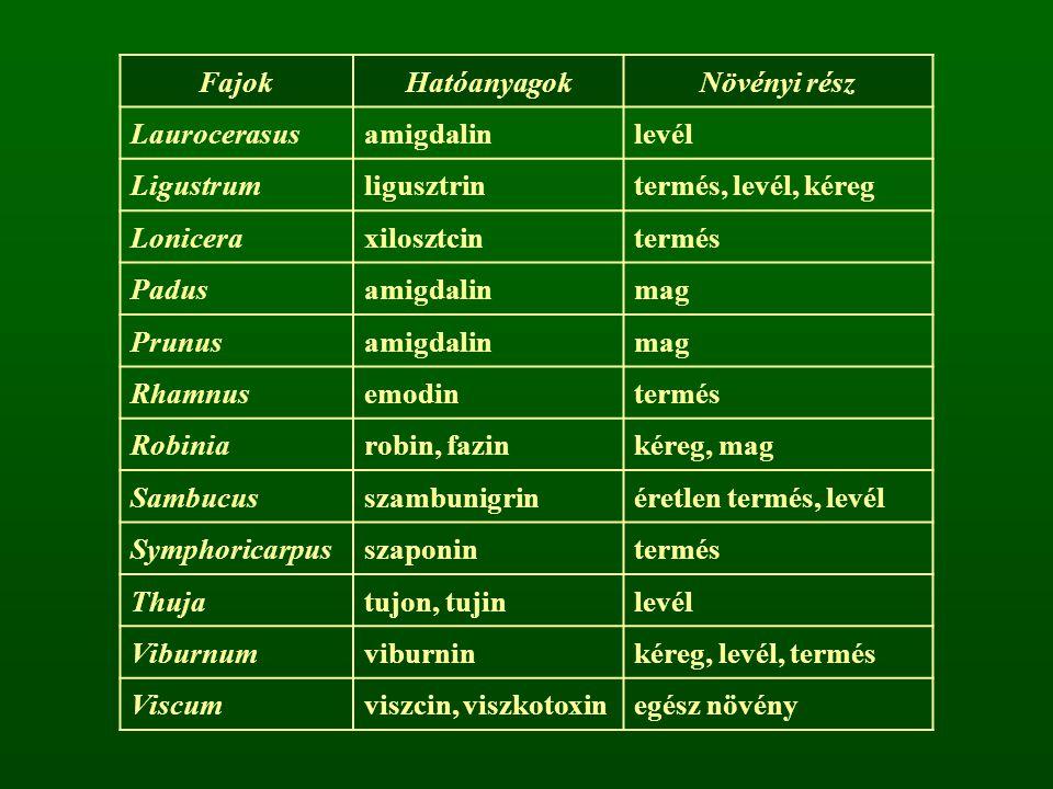 Pollenallergiát okozó fa- és cserjefajok Tudományos névMagyar névAllergén fokozat Abies albaközönséges jegenyefenyő+ Acer negundozöld juhar+ Alnus spp.éger fajok×× Betula spp.nyír fajok××× Carpinus spp.éger fajok+ Castanea sativaszelídgesztenye+ Corylus avellanamogyoró× Fagus sylvaticabükk+ Fraxinus spp.kőris fajok× Juniperus communisközönséges boróka× Larix deciduavörösfenyő+ Ligustrum vulgarevesszős fagyal×