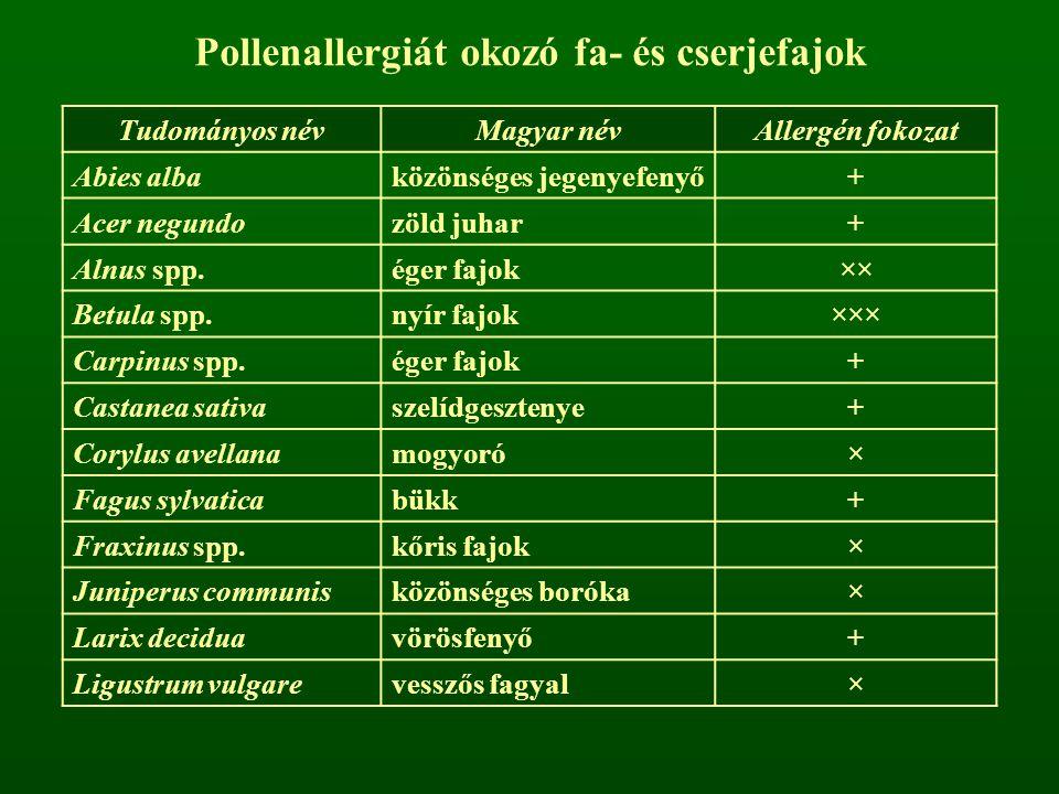 Pollenallergiát okozó fa- és cserjefajok Tudományos névMagyar névAllergén fokozat Abies albaközönséges jegenyefenyő+ Acer negundozöld juhar+ Alnus spp