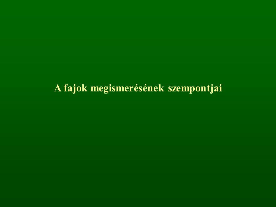 Tudományos név (szinonímok is) Magyar név (társnevek is) Rendszertani besorolás