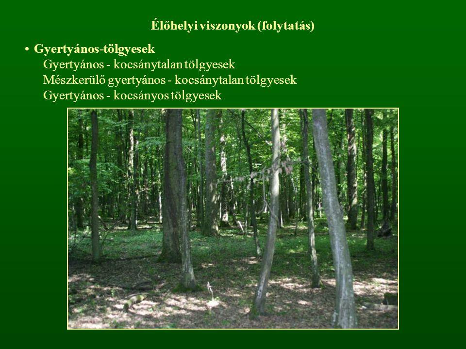 Élőhelyi viszonyok (folytatás) Gyertyános-tölgyesek Gyertyános - kocsánytalan tölgyesek Mészkerülő gyertyános - kocsánytalan tölgyesek Gyertyános - kocsányos tölgyesek