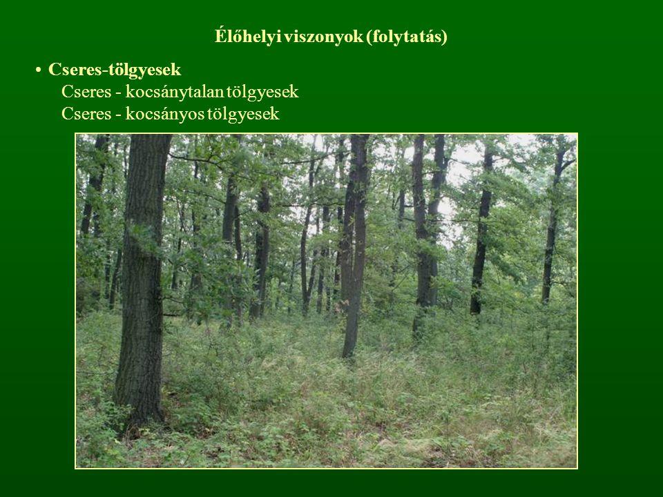 Élőhelyi viszonyok (folytatás) Cseres-tölgyesek Cseres - kocsánytalan tölgyesek Cseres - kocsányos tölgyesek