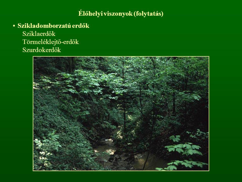 Élőhelyi viszonyok (folytatás) Szikladomborzatú erdők Sziklaerdők Törmeléklejtő-erdők Szurdokerdők