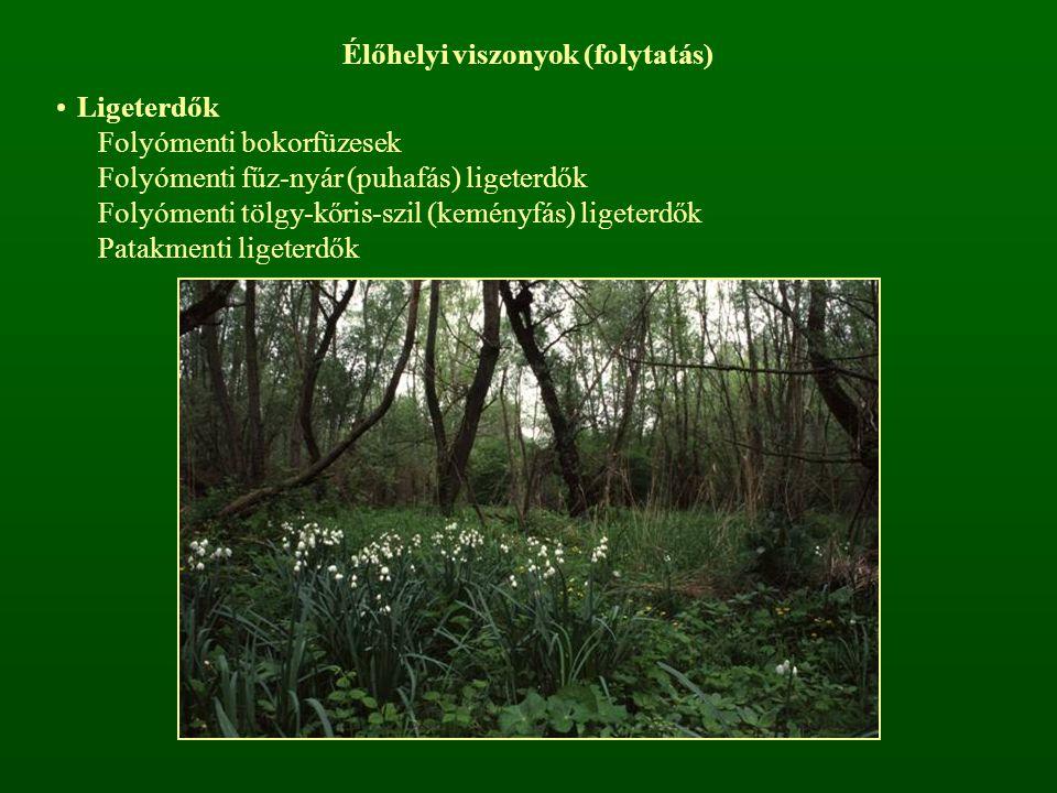 Élőhelyi viszonyok (folytatás) Ligeterdők Folyómenti bokorfüzesek Folyómenti fűz-nyár (puhafás) ligeterdők Folyómenti tölgy-kőris-szil (keményfás) lig