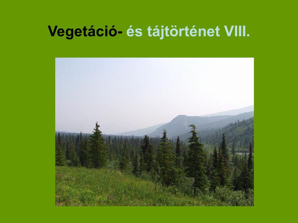 Vegetáció- és tájtörténet VIII.
