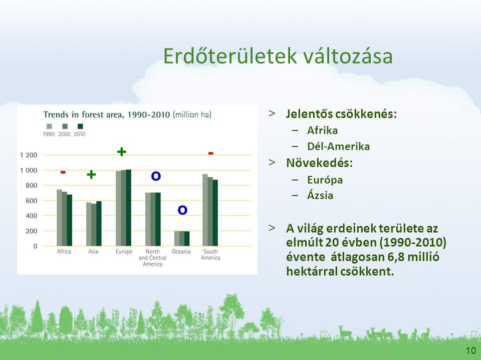 10 Erdőterületek változása > Jelentős csökkenés: –Afrika –Dél-Amerika > Növekedés: –Európa –Ázsia > A világ erdeinek területe az elmúlt 20 évben (1990